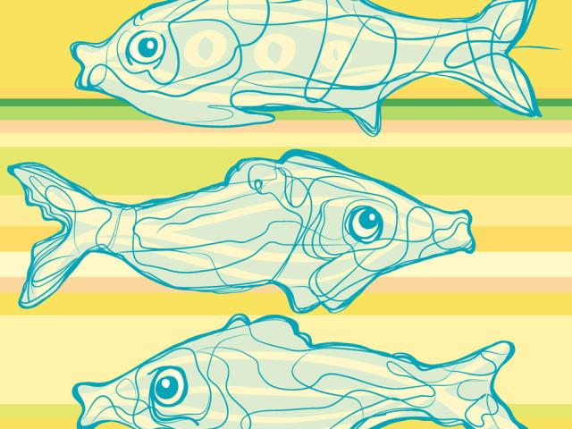 ilustrace . křivky